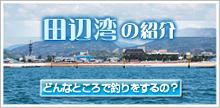 田辺湾のご紹介