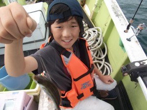 色んな魚が釣れたよ♪アジ・ガシラ・ソーダガツオ2