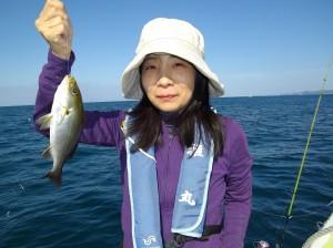イサギ大漁♫ 良型サイズで大満足(๑≧౪≦)3