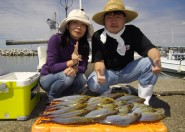 イサギ大漁♫ 良型サイズで大満足(๑≧౪≦)