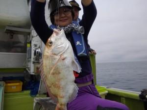 マダイにコロダイ釣れました(๑≧౪≦)3