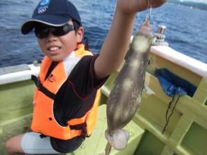 アジやカワハギ大きなコロダイが釣れめっちゃ楽しかった(*´∀`*)3